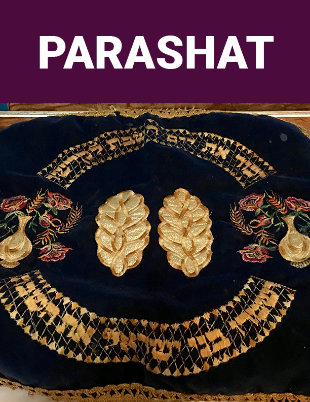 Parashat Module Top Right